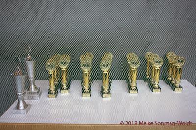 Pokale hinter dem Netz Final Four